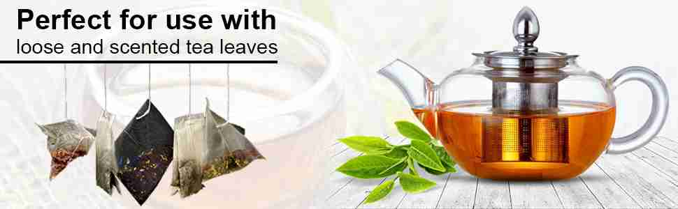 Ansio Small Glass Teapot With Infuser Steel